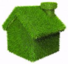 Дом из травы