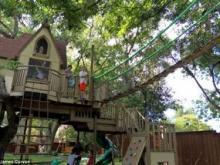 США будинок на дереві